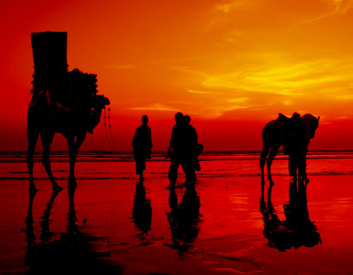 ocean pakistan sunset red sea horse beach public water silhouette yellow canon camel karachi clifton sindh myfave seaview 400d aplusphoto iqbalkhatri