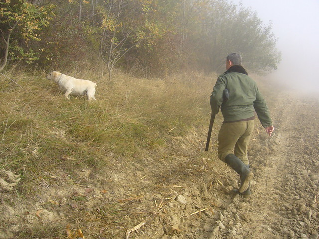 Header of la chasse