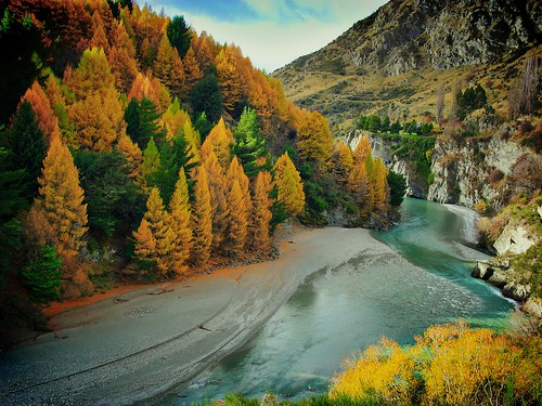 Autumn on the Shotover River