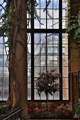 longwood gardens plant kennett square botanical garden park