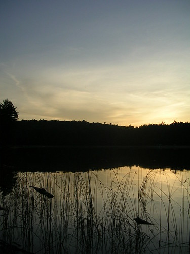 sunset pond dusk michigan scenicmichigan