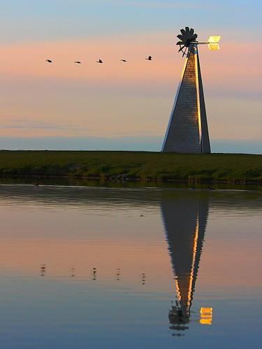 sunset reflection water windmill geese dusk ottawa goose andrewhaydenpark d40 explored 70200f4is flickrelite everywherewalks silliopolous