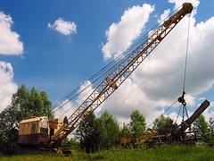 Burseldon Crane