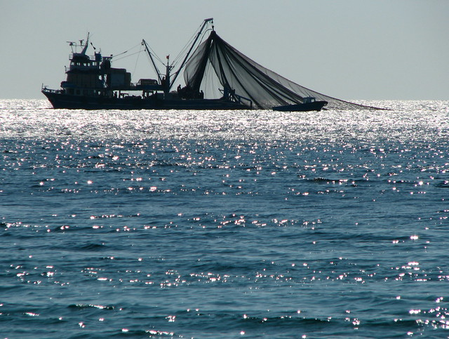 photo of a trawler at sea, nets deployed