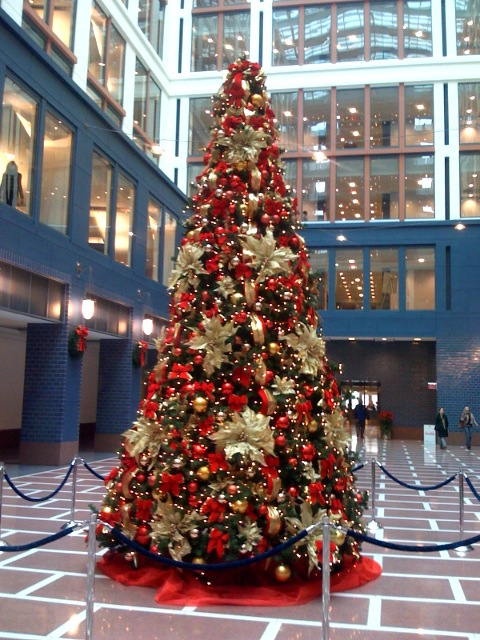 office christmas tree 2007 flickr photo sharing
