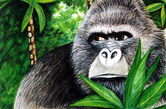 Tarzan gorilla flickr photo sharing - Tarzan gorille ...