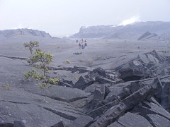 buckled lava in Kilauea Iki crater