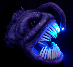 Feltedchicken blog more picts of angler fish for What do angler fish eat