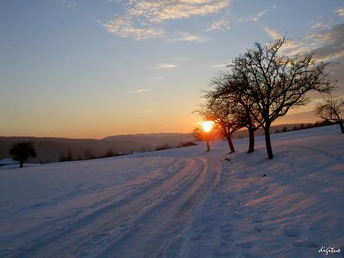 trees winter sunset geotagged sonnenuntergang sundown bäume badenwuerttemberg schwaebischealb zwiefalten geo:lat=48238666 geo:lon=9477532