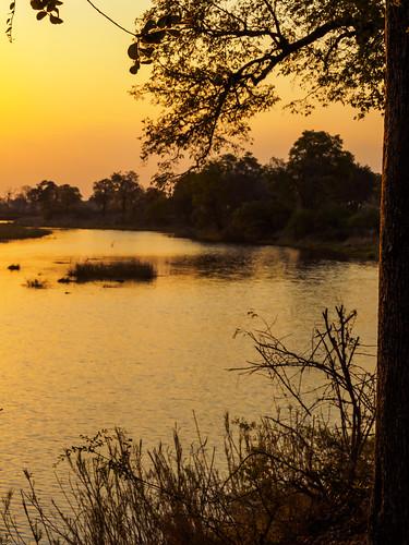 caprivi mudumuparc namibia paysage nature octobre zambeziregion namibie
