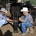 Emilio y Pedro ordeñando las vacas - milking the cows; Los Parajes de Yécora, Sonora, Mexico por Lon&Queta
