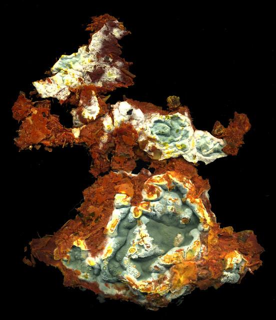 fungal flouce