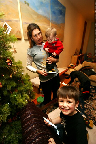 in the corner with the tree    MG 8390