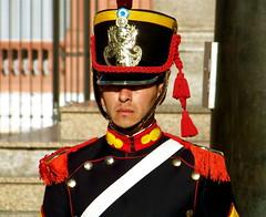 Portrait of a federal guard