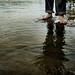 Flooded by .Bradi.