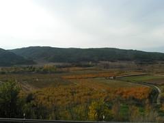 Vista de La Vega, con el Fondo de Las Viñas y El Pinar