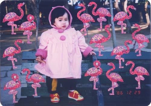 Flamingo, my friend.