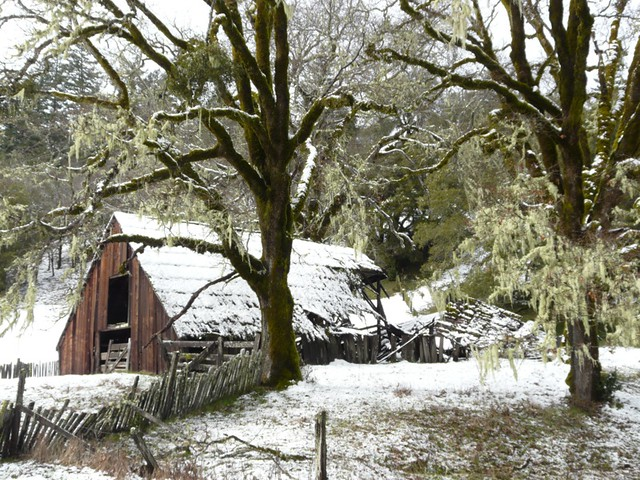 Fallen Barn in Snow