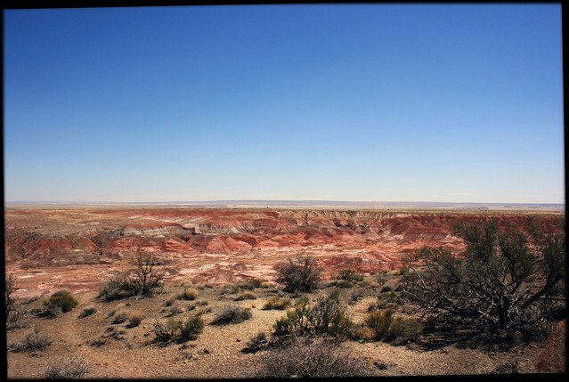 Painted Desert, Petrified Forest (3601)