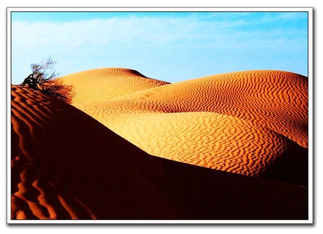 la espalda de la duna