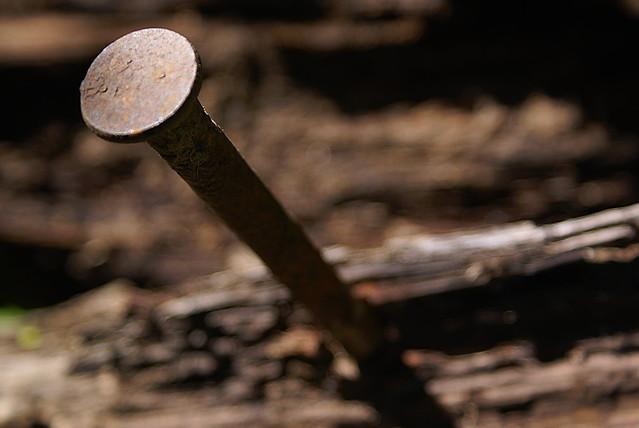 Nail in Wood   Flickr - Photo Sharing!