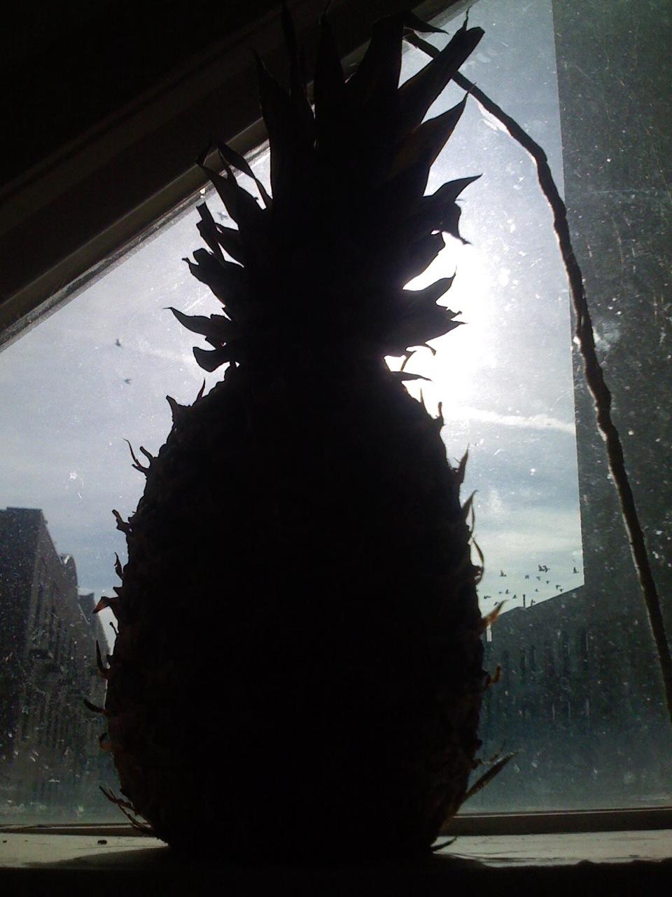 Iphone X Pineapple