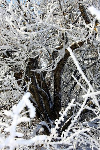 Bad Mitterndorf Austria Winter par :: eu-moto images™◄◄ B.Egger