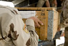 crate of AK-47  by United States Forces - Iraq (Inactive)