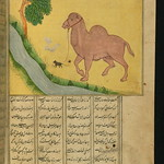 Illuminated Manuscript, Collection of poems (masnavi), A mouse, clutching the reins of a camel, at a stream of water, Walters Art Museum Ms. W.626, fol. 94b