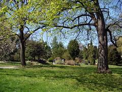 Jardin botanique à Genève