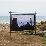 """Exposición """"Una Playa… Un Pueblo, el desastre del Prestige"""""""