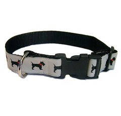 collar, dog collar, strap, belt,
