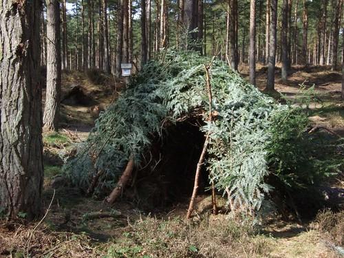 Makeshift hut
