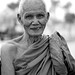 Thai Monk by Matt Cline
