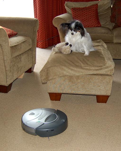 Roomba Video Dog Poop