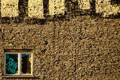 Fenster @ Berlin