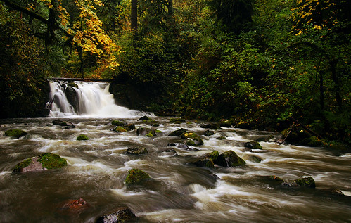 autumn water oregon fallcolors autumncolors waterfalls pacificnorthwest linncounty mcdowellcreek mcdowellcreekcountypark