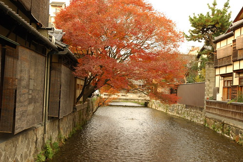 ahhhh Kyoto fall color