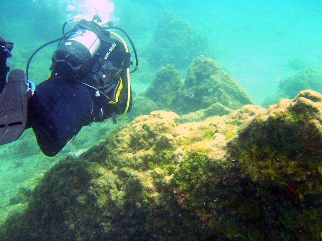 Canary Islands Diving Padi