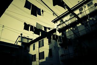 Le case di ringhiera a Milano sono tutte belle