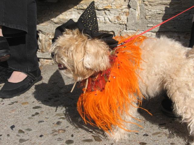 Halloween parade Carmel Ca
