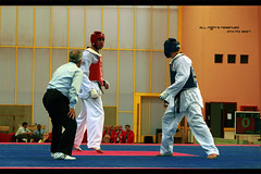 hapkido(0.0), tang soo do(0.0), contact sport(1.0), taekwondo(1.0), sports(1.0), combat sport(1.0), martial arts(1.0),
