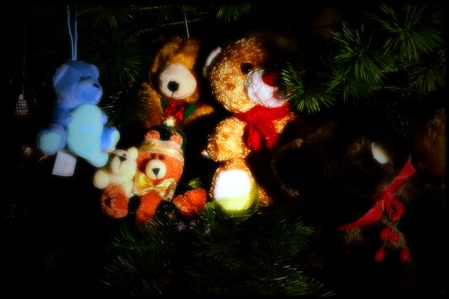 Have A Beary Happy Holiday