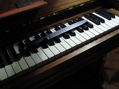 celesta, nord electro, piano, musical keyboard, keyboard, music workstation, electric piano, player piano,