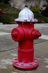 Redding Hydrant