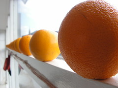 clementine, orange, citrus, orange, valencia orange, produce, fruit, food, tangelo, bitter orange, tangerine, mandarin orange,
