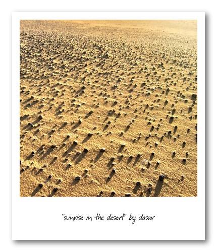 sahara polaroid desert libya