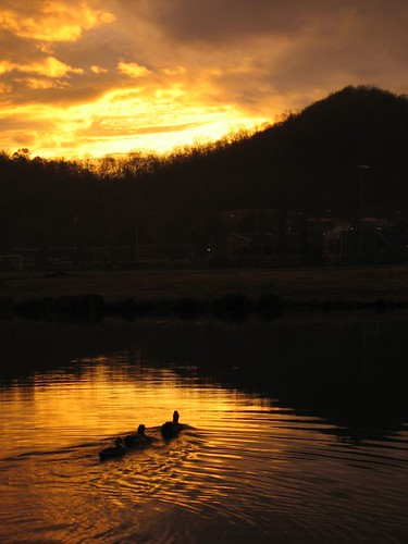 landscape landscapes sunsets