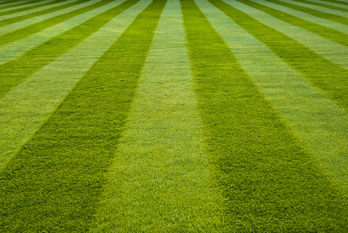 Stripes on the lawn - Emmanuel