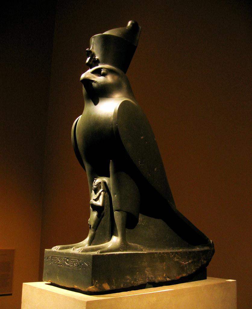 egypt - falcon